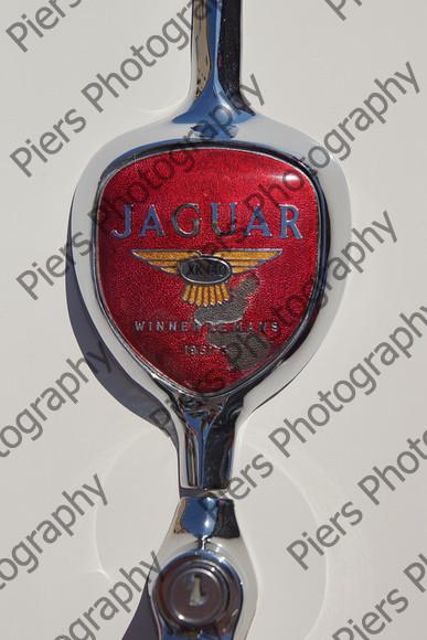 Mille Miglia12 119   Mille Miglia 2012   Keywords: Brescia, Mille Miglia, Piers Photo